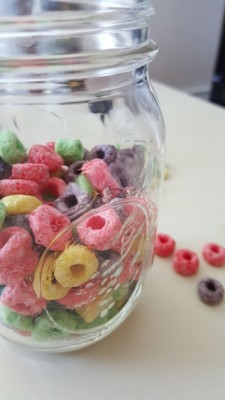 Fruit Loops Puppy Chow
