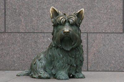 Roosevelt Dog Statue