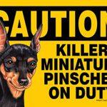 Killer Mini Pinscher On Duty Dog Sign Magnet Velcro 5×7 1