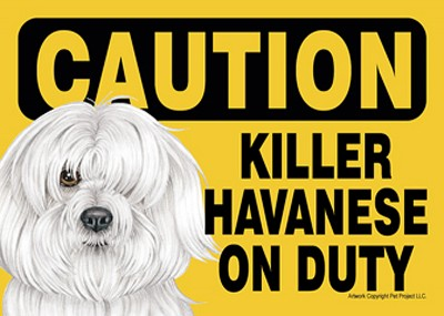 Killer Havanese On Duty Dog Sign Magnet Velcro 5×7 1