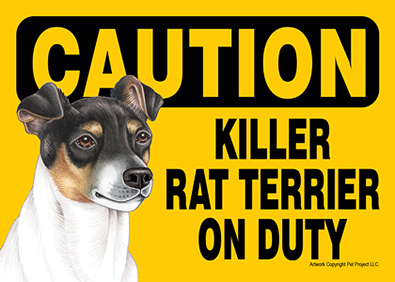 Killer Rat Terrier On Duty Dog Sign Magnet Velcro 5x7