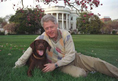 Clinton Dog