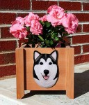 Alaskan Malamute Planter Flower Pot Black White