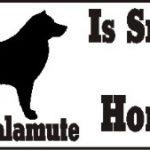 Alaskan Malamute Dog Smarter Than Honor Bumper Sticker