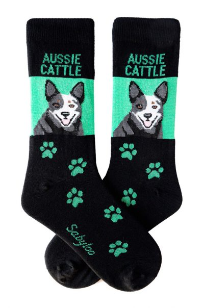 Australian Cattle Dog Blue Sock Gren and Black in Color