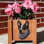 Australian Cattle Dog Planter Flower Pot Blue 1