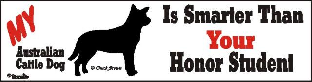 Australian Cattle Dog Smarter Than Honor Bumper Sticker