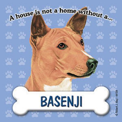 Basenji-Dog-Magnet-Sign-House-Is-Not-A-Home