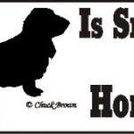 Basset Hound Dog Smarter Than Honor Bumper Sticker