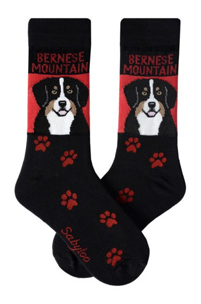 Bernese Mountain Dog Socks Red and Black in Color