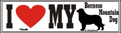 I Love My Bernese Mountain Dog Bumper Sticker
