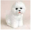 Find Bichon Frise Gifts & Merchandise