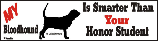 Bloodhound Smart Dog Bumper Sticker