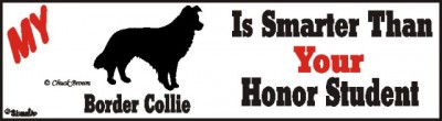 Border Collie Dog Smarter Than Honor Bumper Sticker