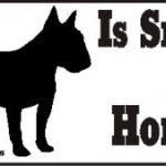Bull Terrier Dog Smarter Than Honor Bumper Sticker