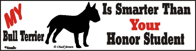 Bull Terrier Dog Smarter Than Honor Bumper Sticker