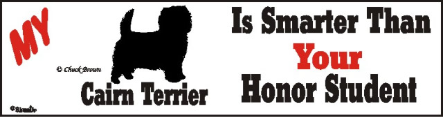 Cairn Terrier Dog Smarter Than Honor Bumper Sticker