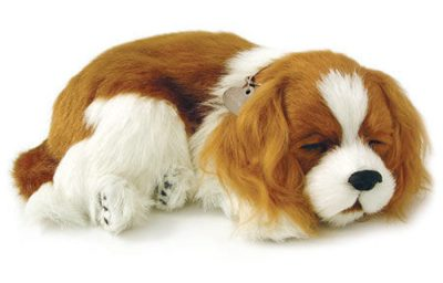 Cavalier King Charles Perfect Petzzz Breathing Dog