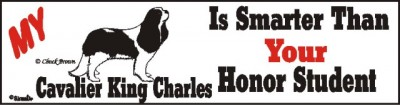 Cavalier King Charles Dog Smarter Than Honor Bumper Sticker