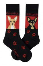 Chihuahua Socks - Tan and Black Chihuahuas Socks are Red and Black in Color
