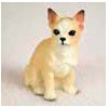 Find Chihuahua Gifts & Merchandise
