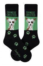 Chinese Crested Socks Black and Green in Color