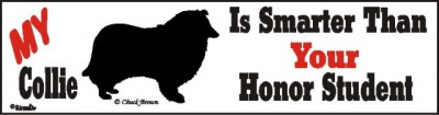 Collie Smart Dog Bumper Sticker 1