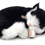 Black White Shorthair Cat Stuffed Animal Perfect Petzzz