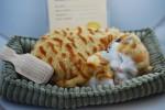 Orange Tabby Cat Stuffed Animal Perfect Petzzz