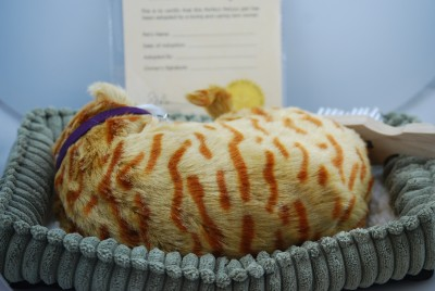 Orange Tabby Cat Stuffed Animal Perfect Petzzz_2