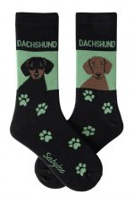 Dachshund Red and Black Socks - Green and Black in Color