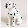 Locate Dalmatian Gifts & Merchandise