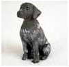 Shop German Shorthair Pointer Gifts & Merchandise
