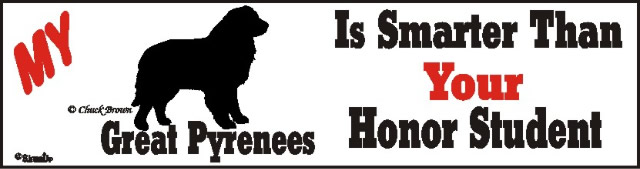 Great Pyrenees Dog Smarter Than Honor Bumper Sticker