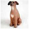 Search Italian Greyhound Gifts & Merchandise