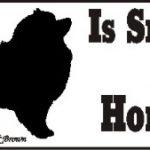 Keeshond Smart Dog Bumper Sticker 1
