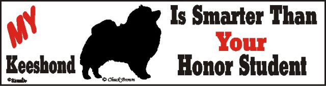 Keeshond Smart Dog Bumper Sticker