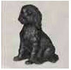 Browse Labradoodle Gifts & Merchandise