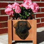 Leonberger Planter Flower Pot 1