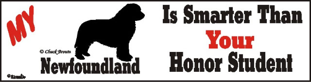 Newfoundland Smart Dog Bumper Sticker