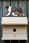 Australian Shepherd Hand Painted Dog Bird House Blue Merle