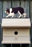 Border Collie Hand Painted Dog Bird House Black Tri