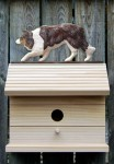 Border Collie Hand Painted Dog Bird House Red Merle