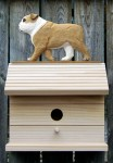 English Bulldog Hand Painted Dog Bird House Tan