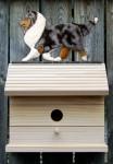 Shetland Sheepdog Hand Painted Dog Bird House Blue Merle