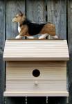 Welsh Corgi Pembroke Hand Painted Dog Bird House Sable