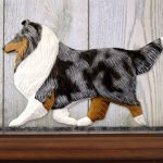 Sheltie Dog Figurine Sign Plaque Display Wall Decoration Blue Merle 1