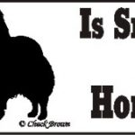 Papillon Smart Dog Bumper Sticker 1