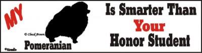 Pomeranian Smart Dog Bumper Sticker