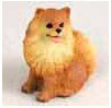 Search Pomeranian Gifts & Merchandise